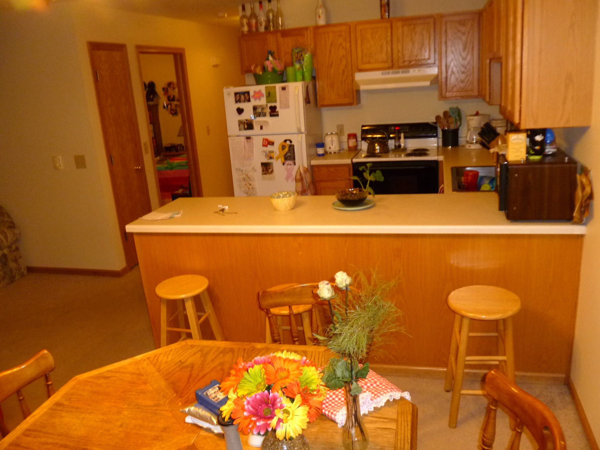 J k investments photo gallery 3 br split apartments - One bedroom apartments menomonie wi ...